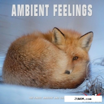 VA - Ambient Feelings: The Finest Ambient and Chill Music (2016)